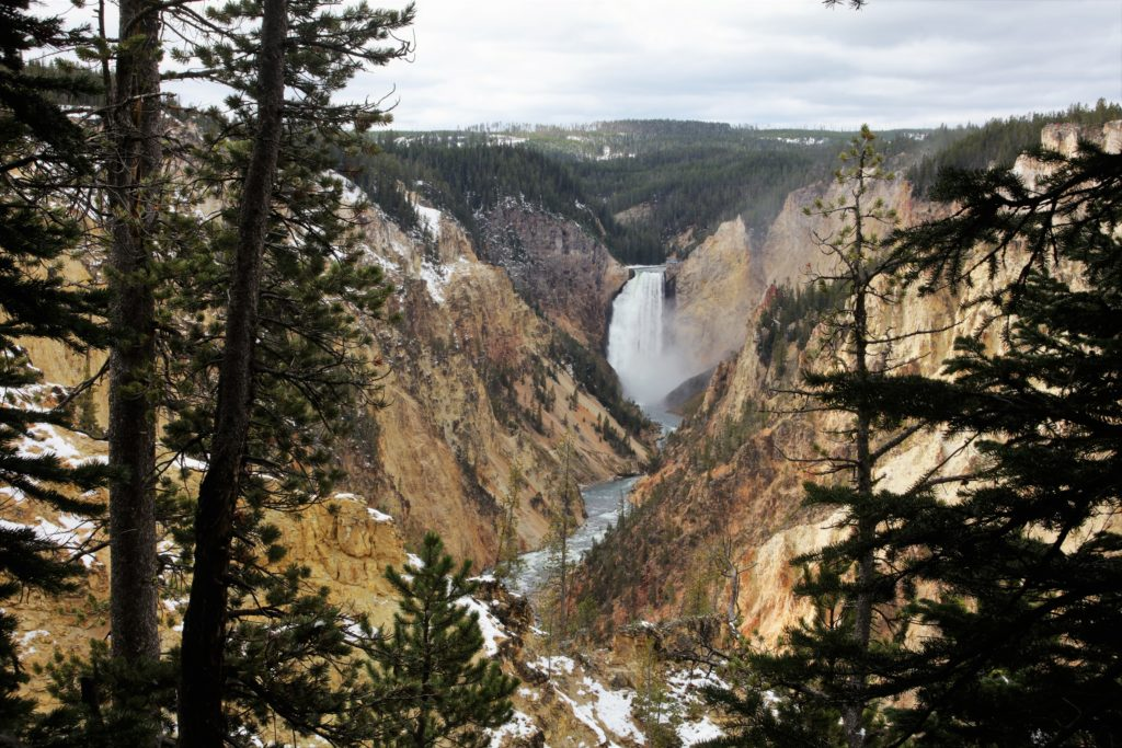 Artist Point, Lower Falls - Yellowstone National Park